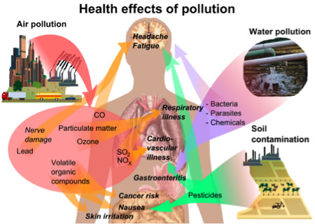 """particulate matter health effects 7-1 7 health effects of particulate matter the children's environmental health protection act (senate bill 25, senator martha escutia, stats 1999, ch 731) required the arb, in consultation with oehha, to """"review all existing."""