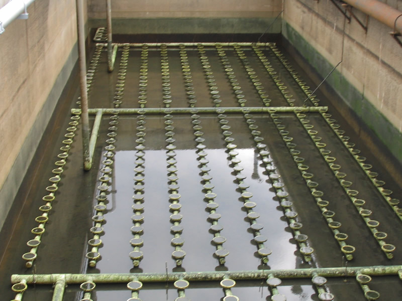 Wastewater Secondary Treatment Activated Sludge